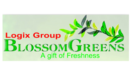 Logix group bloosom green
